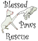 Blessed Paws Rescue logo
